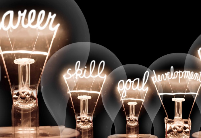 Lightbulbs that spell out plan, success, career, skill, goal, development, motivation and growth.