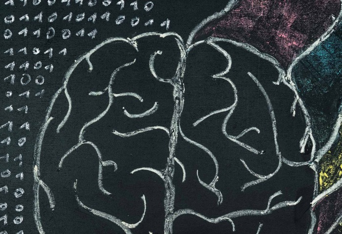 Chalkboard drawing of a brain.